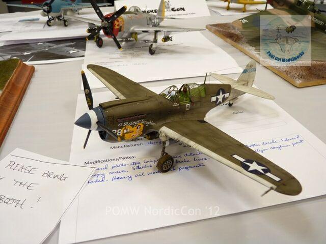 1/48 P40 Warhawk