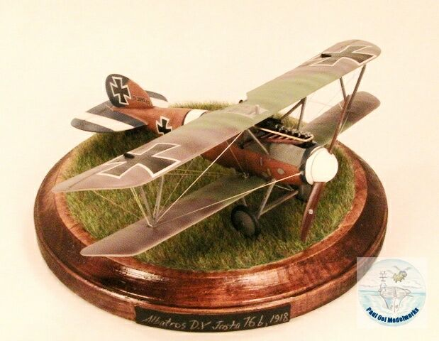 1/48 Biplane - Gold Medal